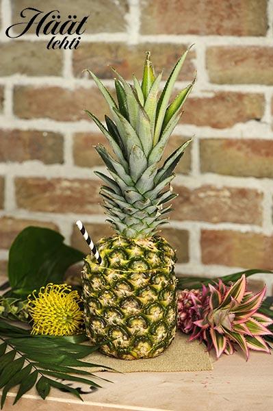 Trooppisessa daiquiri-drinkissä näkyy ja maistuu raikas ananas