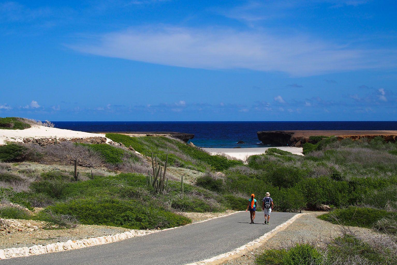 Häämatkailijoiden päiväretket Aruballa