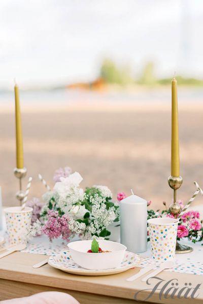 hääbrunssi hääjuhlat rannalla katettu juhlapöytä kertakäyttöastioista