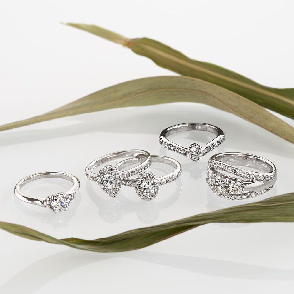 Andreasen valkokultaiset timanttisormukset